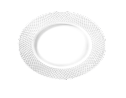 Dinner Plate set of 6  160inch | 25.5 cm