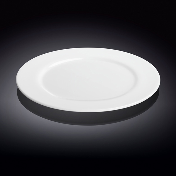 professional dinner plate 10inch  25.5 cm